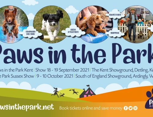 Paws in the Park 2021 UPDATE